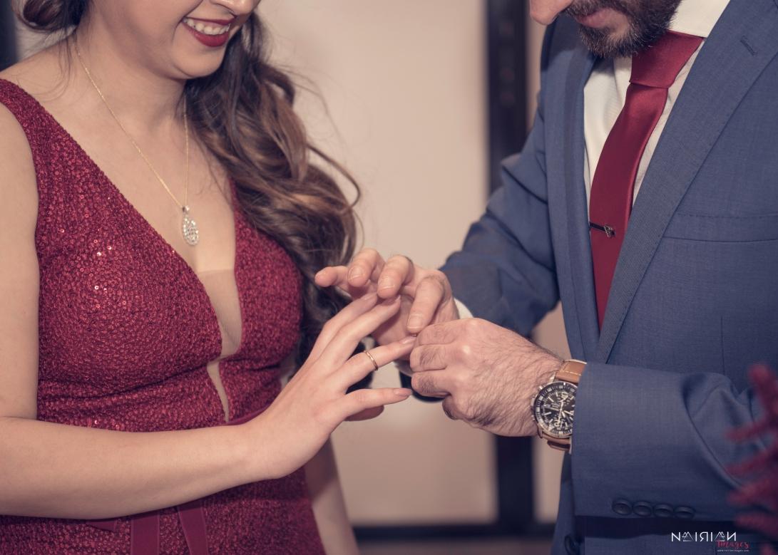 Engagement - Narineh & Sako-259